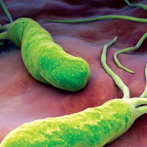 sintomi helicobacter pylori cura