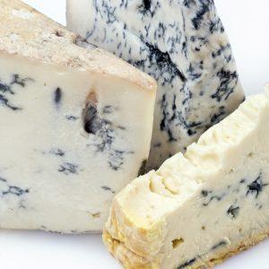 formaggio con muffa gorgonzola