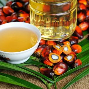 olio-di-palma-dannoso