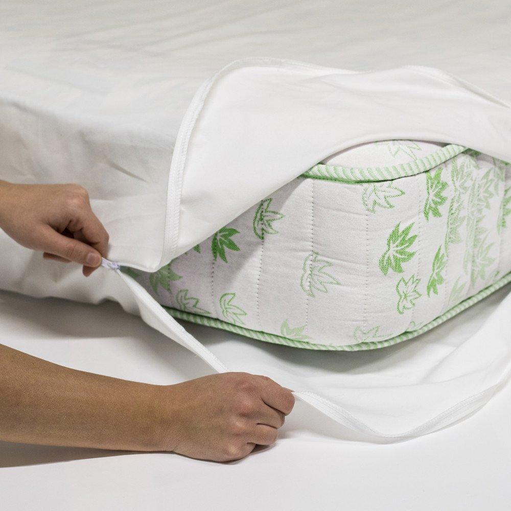 Allergia agli acari della polvere biancheria da letto - Prurito diffuso a letto ...