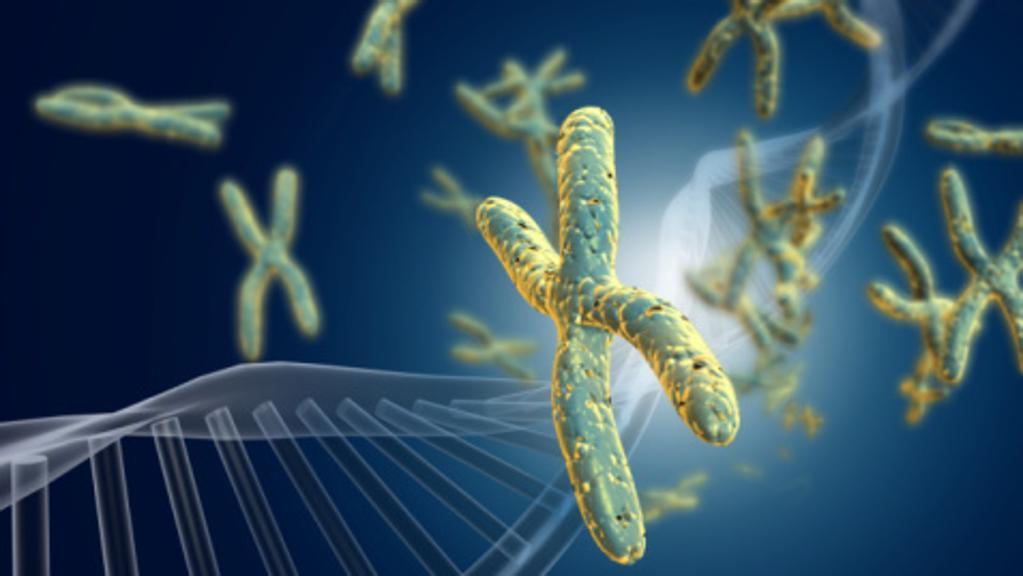 gravidanza malattie genetiche gravi trasmissione