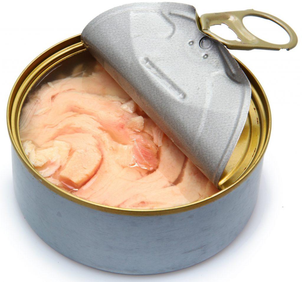 Pesce in scatola quali sono i migliori pesci in scatola for Contenitore per pesci